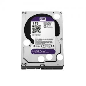 Western Digital Purple 1TB Surveillance Hard Drive price in hyderabad, telangana, nellore, vizag, bangalore